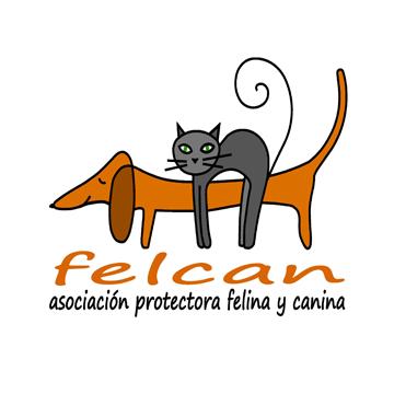 Felcan Asociación protectora felina y canina