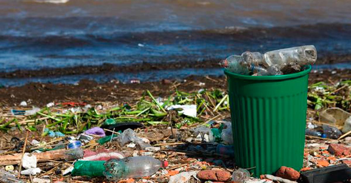 Proteger el medio ambiente pero que no cueste dinero - Como humidificar el ambiente ...