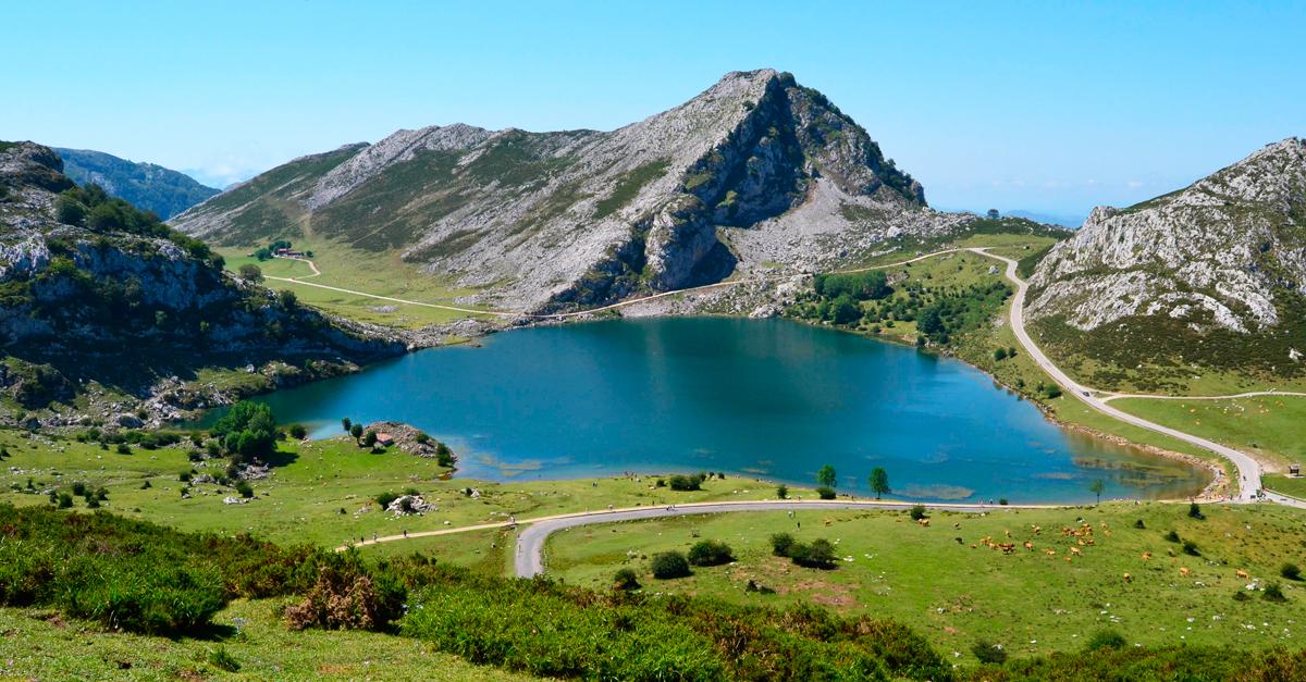 Parques nacionales accesibles a todos - Ambientadores naturales para la casa ...
