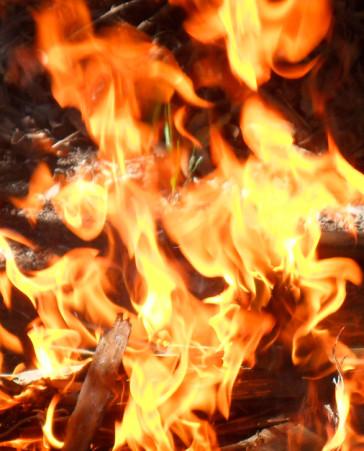 Más control en los bosques este verano. No a los incendios forestales