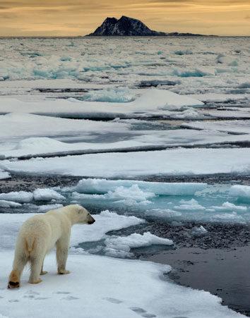 No permitas la venta de botellas de agua del Ártico. ¡Salva al Planeta!