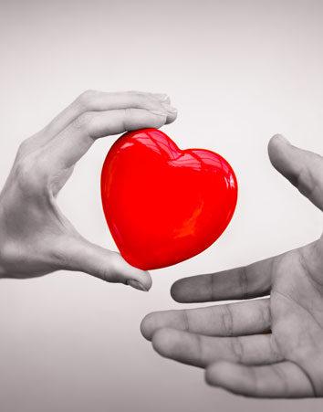 Firma porque la donación de órganos sea obligatoria