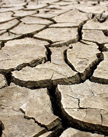 ¡¡Nos estamos quedando sin agua!!